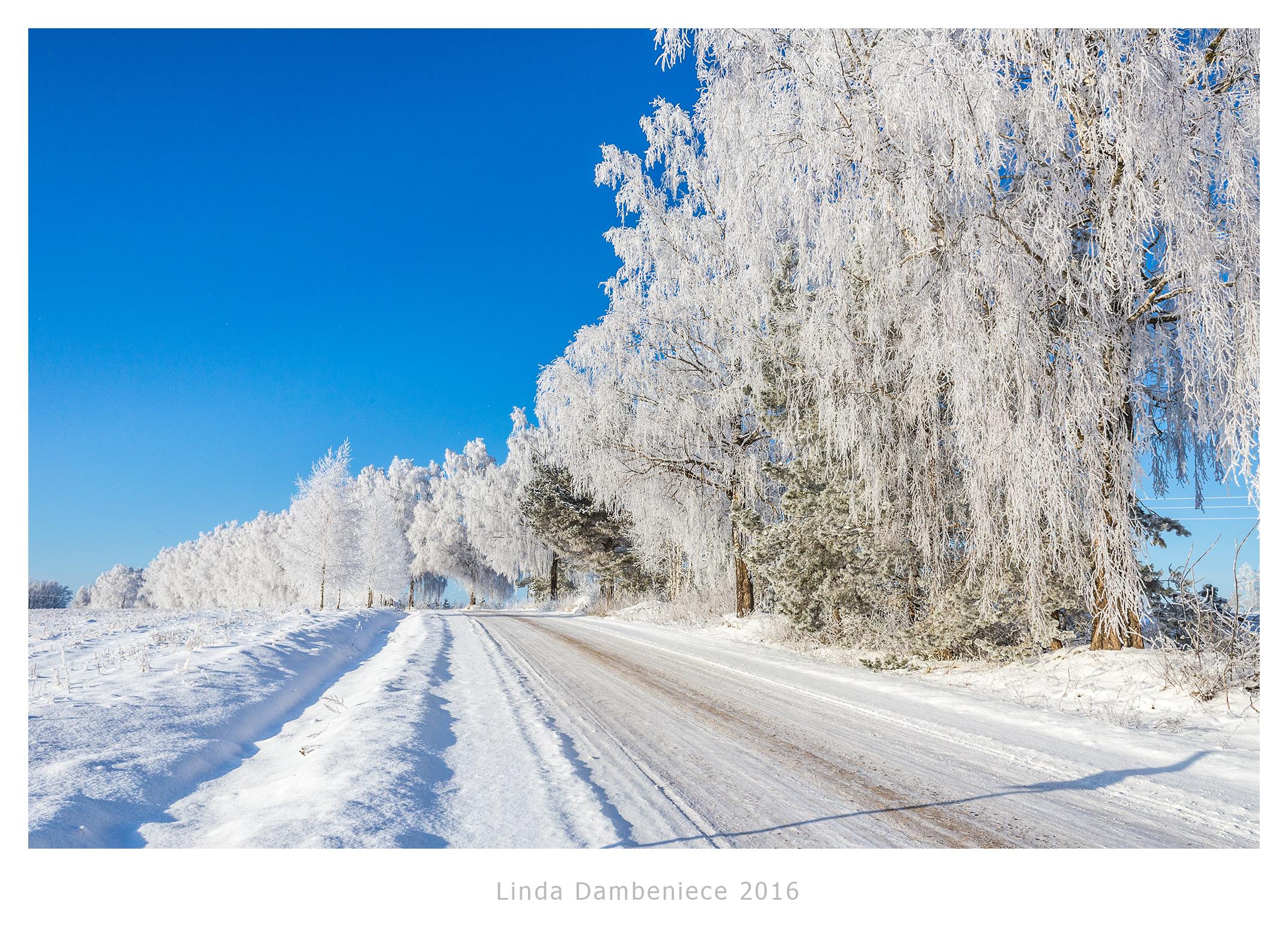ceļš ziemā