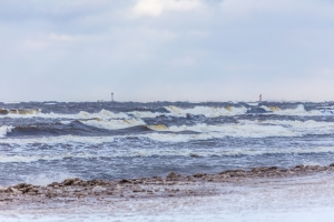Jūra ziemā