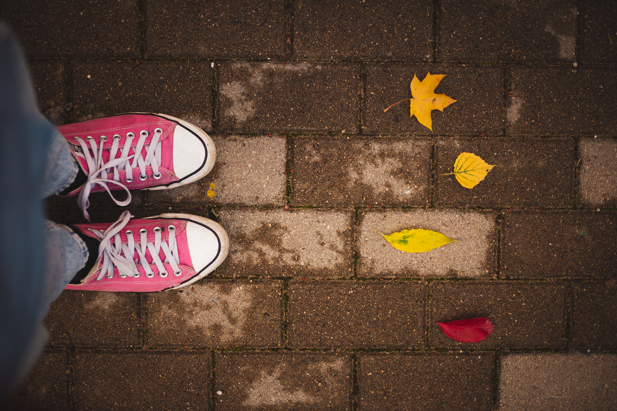 Krāsainas rudens lapas #radosaisizaicinajums